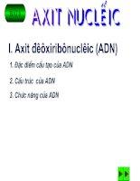 Bài 6 : Axit Nuclêic