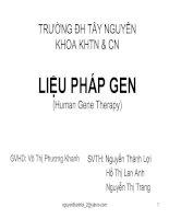 sermina lieu phap gen human gene therapy