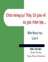 Tiếng Việt 4.Tập 1