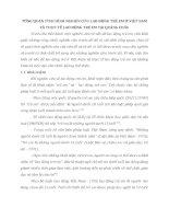 TỔNG QUAN TÌNH HÌNH NGHIÊN CỨU LAO ĐỘNG TRẺ EM Ở VIỆT NAM VÀ THỰC TẾ LAO ĐỘNG TRẺ EM TẠI QUẢNG CHÂU
