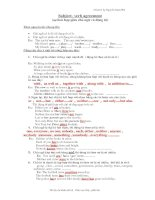 subject- verb agreement (P)