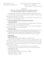 Báo cáo của Ban thanh tra ND tại HNCNVC