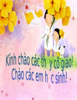 tong hop hai dao dong dieu hoa cung phuong cung tan so. Phuong phap gian do Fre-nen