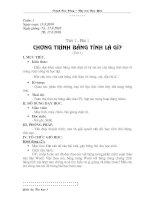 Tiết 1 - Chương trình bảng tính là gì (t1)