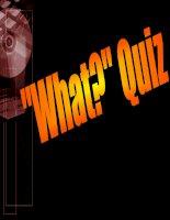 What Quiz