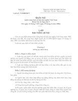 Luật BHXH Việt Nam (mới)