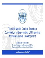 The UN Model Double Taxation Convention in the context of Financing for Sustainable Development