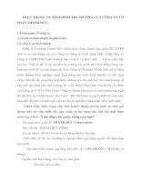 THỰC TRẠNG VỀ TÌNH HÌNH THỊ TRƯỜNG CỦA CÔNG TY CỔ PHẦN THÀNH ĐỨC