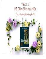 Tiet 31 32 Ma Giam Sinh mua Kieu
