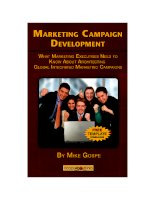 Mike gospe marketing campaign development  what marketing executives need to know about architecting global integrated marketing campaigns happy about (2008)