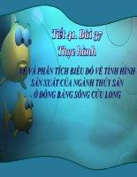 Bài 37. Thực hành. Vẽ và phân tích biểu đồ về tình hình thủy sản ở Đồng bằng sông Cửu Long