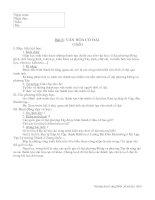 Bài 6 Văn hóa cổ đại