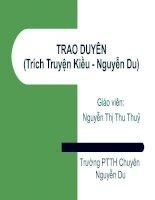 TRAO DUYÊN(Trích Truyện Kiều - Nguyễn Du