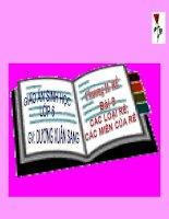 BÀI 9 - CÁC LOẠI RỄ VÀ MIỀN HÚT CỦA RỄ