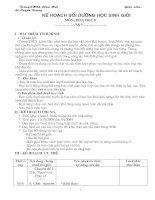 Kế hoạch Bồi Dưỡng HSG Toán 8(của GV)