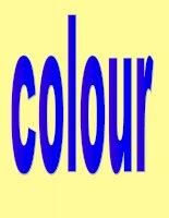 Anh văn lớp 3- Colour
