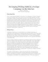 Developing Writing Skills in a Foreign Language via the Internet.doc