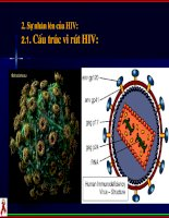 tuyên truyền phòng chông HIV/AIDS