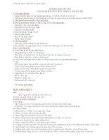 Bài làm văn số 1 lớp 11 - NLXH