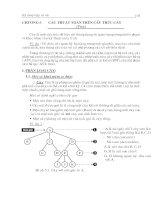 Các thuật toán trên cấu trúc cây