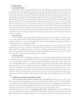 SKKN - Đặt vấn đề vào bài môn Lịch sử (Năm học 2006 - 2007)