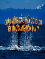 BAI 3 : Mot so van de mang tinh toan cau