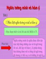 Nghia tuong minh va ham y - tiet 1.ppt