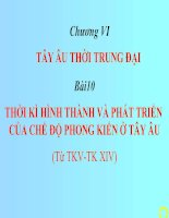 Bai 10 Thoi ky hinh thanh va phat trien cua che do PKo Tay Au.