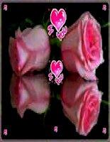 bộ sưu tập thiệp hoa cực đẹp