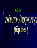Sinh hoc 11 bai 16