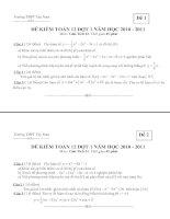 Kiểm Tra Tập Trung Toán 12 - Đợt 1 - Năm 2010 (Có đáp án)
