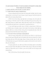 LÝ LUẬN CHUNG VỀ CÔNG TY CHỨNG KHOÁN VÀ NGHIỆP VỤ BẢO LÃNH PHÁT HÀNH CHỨNG KHOÁN