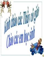 Bài 40. Quan sát sự sinh trưởng và phát triển ở một số động vật
