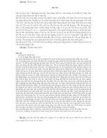 Những bài văn hay lớp 5