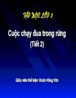 CUỘC CHẠY ĐUA TRONG RỪNG-LỚP 2