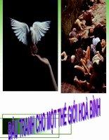 Tiết 6.7 Đấu tranh cho một thế giới hòa bình