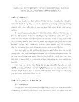 SKKN: TẠO HỨNG THÚ HỌC TẬP MÔN HÓA HỌC CHO HỌC SINH THPT QUA CÁC GIỜ THỰC HÀNH THÍ NGHIỆM