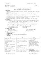 Giáo án hóa 8 cả năm 2010 - 2011 (Cực chuẩn)