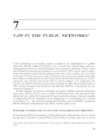 VoIP in the Public Networks