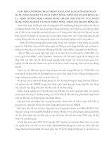 GIẢI PHÁP MỞ RỘNG HOẠT ĐỘNG BẢO LÃNH TẠI CHI NHÁNH NGÂN HÀNG NÔNG NGHIỆP VÀ PHÁT TRIỂN NÔNG THÔN CHI NHÁNH ĐỐNG ĐA