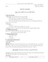 Giáo án sinh 6 chuẩn từ bài 1-39