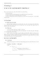Lập trình căn bản Chương 3 CÁC CÂU LỆNH ĐƠN TRONG C