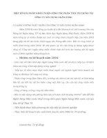 MỘT SỐ GIẢI PHÁP HOÀN THIỆN CÔNG TÁC PHÂN TÍCH TÀI CHÍNH TẠI CÔNG TY XÂY DỰNG NGÂN HÀNG