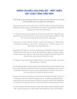 Phong tục tập quán Việt: Trâm cài đầu của phụ nữ