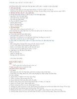 Bài làm văn số 3 lớp 11 - NLVH