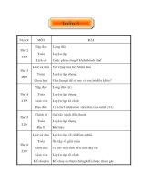 giáo án lớp 5( tuần 3)
