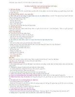 Bài làm văn số 2 lớp 11 - NLVH