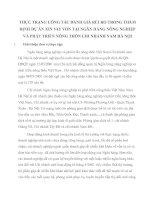 THỰC TRẠNG CÔNG TÁC ĐÁNH GIÁ RỦI RO TRONG THẨM ĐỊNH DỰ ÁN XIN VAY VỐN TẠI NGÂN HÀNG NÔNG NGHIỆP VÀ PHÁT TRIỂN NÔNG THÔN CHI NHÁNH NAM HÀ NỘI