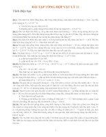 Bài tập tổng hợp Vật Lý 11