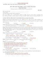 ĐỀ THI THỬ ĐẠI HỌC LẦN 1 NĂM 2012-2013 Môn: HOÁ HỌC